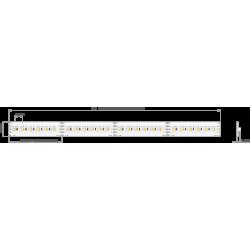 Taśma LED K-1530-RGB+W-24V...